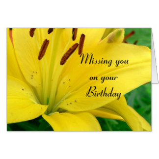 missing_you_on_your_birthday_yellow_daylily_card-rfc15cab5402645e6973cef0d92eff203_xvuak_8byvr_324.jpg
